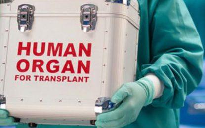 Tunisie : Découverte d'un réseau de trafic d'organes