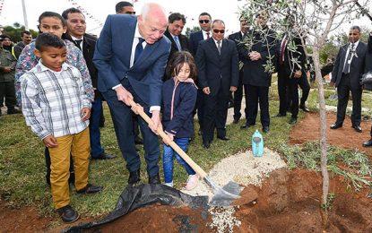 Fête de l'arbre : une occasion pour apprendre le civisme, la préservation de la nature et respect de l'autre
