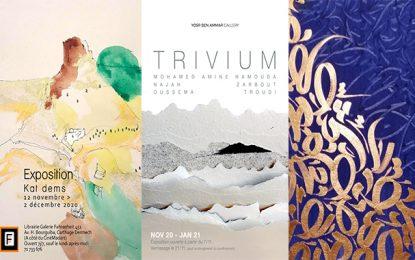 Réouverture des galeries d'art : Plusieurs expositions au programme de ce mois