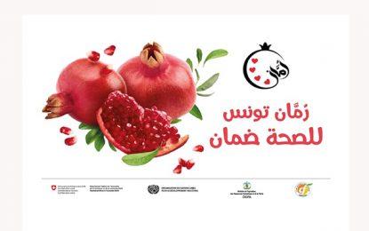 Un programme de valorisation et d'exportation à l'international pour la grenade tunisienne