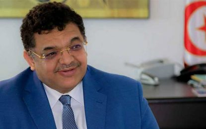 Lotfi Zitoun : «Aujourd'hui c'est au tour des Nahdhaouis de me traiter de karkadan»