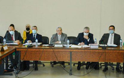 Ministre des Affaires étrangères : «Nous n'avons eu aucune communication officielle des Émirats concernant les nouvelles restrictions du visa»