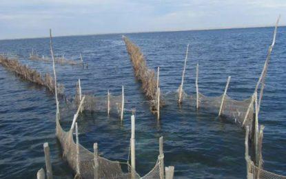 La pêche à la «Charfia» de Kerkennah et le couscous inscrits au patrimoine culturel immatériel de l'Unesco