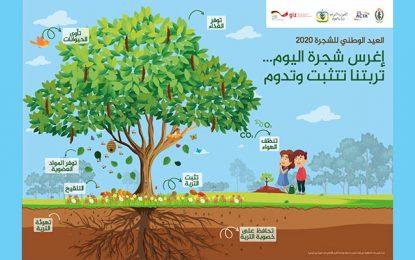 Tunisie : Une semaine pour expliquer l'importance de l'arbre pour la protection des sols