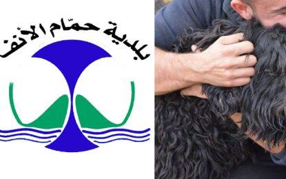Après Tunis, la municipalité de Hammam-Lif décide d'interdire l'abattage des chiens errants