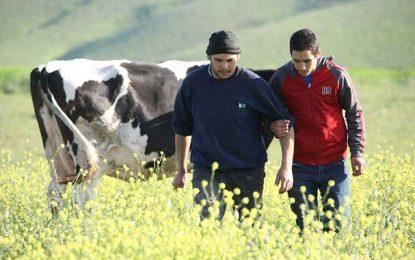 L'agriculture en temps de Covid-19 ou comment rebondir pour éviter l'effondrement