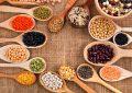 Les légumineuses alimentaires, un précieux patrimoine en danger (1/2)