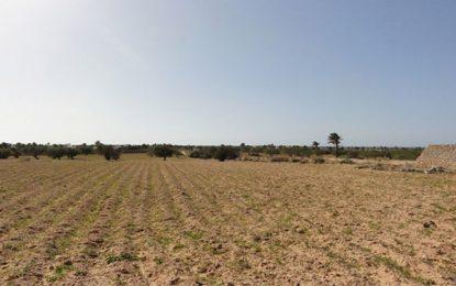 L'État tunisien récupère un terrain domanial agricole de 12 hectares à Ben Arous