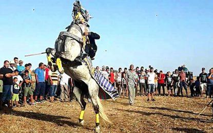 La cavalerie à Fernana : un patrimoine culturel à valoriser