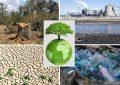 Tunisie accueille la «journée de la terre» dans un climat de graves menaces environnementales