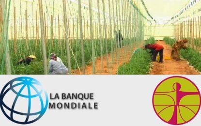 Un don de 2 millions de dollars pour soutenir les agriculteurs de Gabès