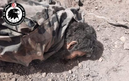 Identité et parcours des 5 terroristes de la Katiba Okba Ibn Nafaa abattus à Kasserine (Photos)