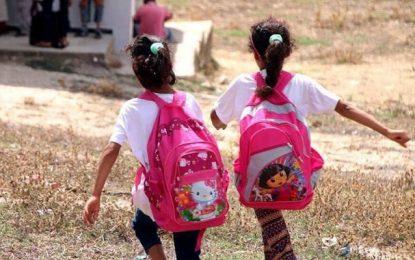 Lutte contre l'abandon scolaire en Tunisie : Afreecan lance son action «Instruire c'est construire»