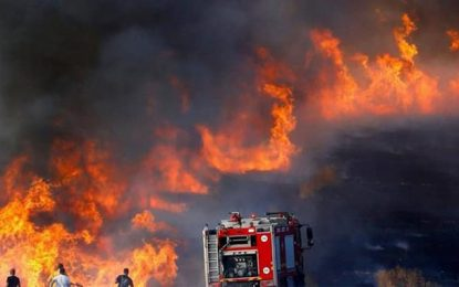 Incendies en Tunisie : Les soldats du feu poursuivent leur combat contre les flammes (Photos)