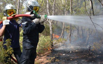 Incendie à Jebel Om Laboueb : Deux gardes forestiers parmi les 9 individus arrêtés à Zaghouan