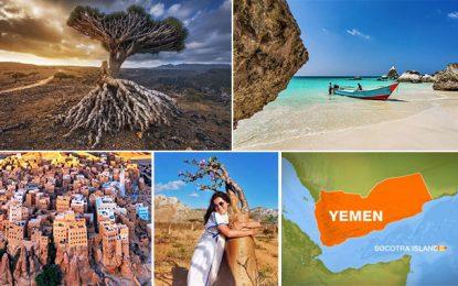 Socotra, l'île au trésor n'est pas totalement perdue